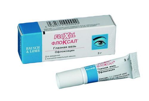 Глазная мазь Floxal — обзор.